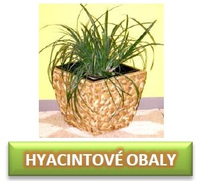 hyacintové obaly